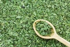 El verde secó las hojas comunes de la ortiga en la cuchara de madera para hacerla caliente Imagen de archivo libre de regalías
