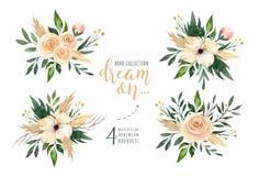El verdor dibujado mano de las pinturas de la acuarela se va y los ramos de la flor Verde y oro del estilo de Boho Ejemplo aislad stock de ilustración