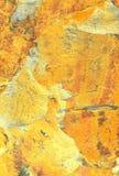 El vetear de oro Foto de archivo libre de regalías