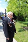 El veterano en el parque Imágenes de archivo libres de regalías