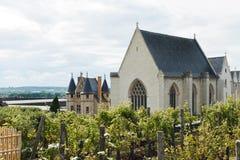 El viñedo adentro enoja el castillo, Francia Foto de archivo libre de regalías