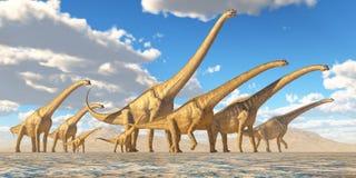 El viajar de la manada de Sauroposeidon Imágenes de archivo libres de regalías