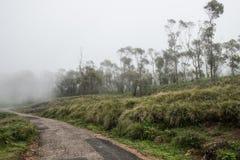 El viajar encima de las colinas foto de archivo libre de regalías