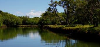 El viajar encima de un río almacen de video