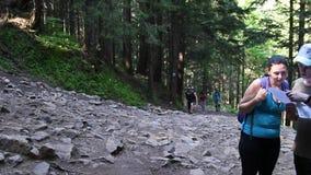 El viajar a las monta?as El hombre y la mujer del caminante celebra la situación del mapa en el bosque y la mirada alrededor Bosq almacen de metraje de vídeo