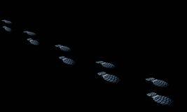 El viaje humano de la bota del movimiento de la acción del camino de las huellas, horizontal, gente resiste Fotografía de archivo libre de regalías
