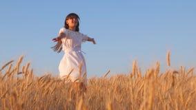 El viajero de la muchacha viaja en el campo baile de la muchacha y risa en un campo de trigo almacen de metraje de vídeo