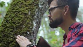 El viajero mira el árbol y toca el tronco con el musgo grueso almacen de video
