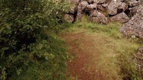 El viajero o el aventurero sigue la trayectoria aislada en bosque almacen de metraje de vídeo