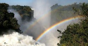 El Victoria Falls, Zimbabwe, África almacen de metraje de vídeo
