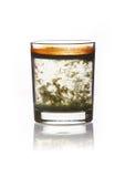 El vidrio con agua turbia se coloca sobre el terreno Imagenes de archivo