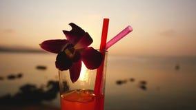 El vidrio del cóctel tropical con la paja adornó una flor en la puesta del sol asombrosa y el fondo hermoso de la opinión del mar almacen de metraje de vídeo