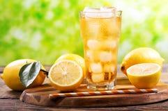El vidrio del limón heló té con las frutas frescas Imagen de archivo libre de regalías