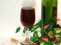 El vidrio a solas del vino rojo y de la botella de vino entre hiedra se va. fotos de archivo