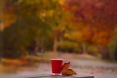 El vidrio y el otoño hojean en un banco en parque del otoño foto de archivo libre de regalías