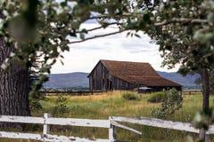 El vieja caer abajo granero en un campo Imagenes de archivo
