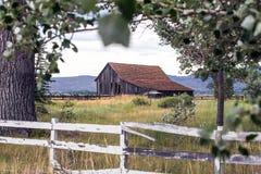 El vieja caer abajo granero en un campo Imagen de archivo libre de regalías