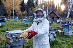 El viejo apicultor recolecta la miel Imagenes de archivo