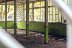El viejo cuarto de madera abandonado roto con las ventanas grandes en el bosque Imágenes de archivo libres de regalías