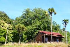 El viejo funcionamiento abajo contiene cerca de Mt Ruapehu Foto de archivo libre de regalías
