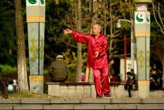 El viejo hombre de Yaan China-Uno está jugando Taijiquan Imagen de archivo libre de regalías