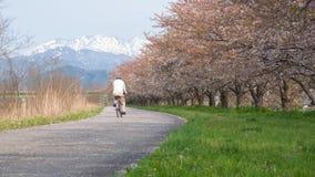 El viejo hombre que montaba una bici en el Riverbank de Kaji era un lugar famoso f imagen de archivo libre de regalías