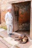 El viejo hombre y el perro en el cuadrado durbar del bhaktapur, Nepal Foto de archivo