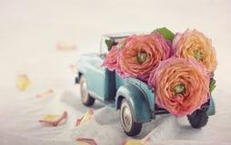 El viejo llevar antiguo del camión del juguete rosas foto de archivo libre de regalías