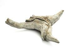 El viejo pedazo de madera esculpió por naturaleza en backgroun blanco aislado Fotografía de archivo