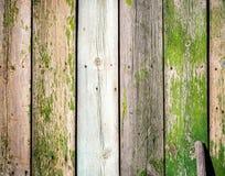El viejo tablero de madera de la cerca pintó el fondo del vintage de la textura con los nudos Imagen de archivo