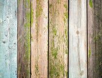 El viejo tablero de madera de la cerca pintó el fondo del vintage de la textura con los nudos Fotografía de archivo