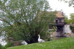El viejo watermill en Vernon, Francia fotos de archivo