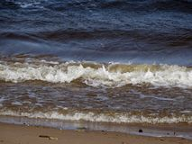 El viento conduce las ondas en la orilla arenosa del río Fotos de archivo