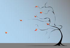 El viento del árbol de la caída sopla las hojas de otoño Foto de archivo libre de regalías