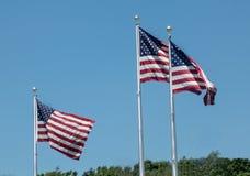 El viento tres barrió banderas americanas Fotografía de archivo