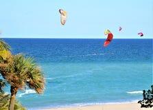 El viento tropical del invierno es un favorito de las personas que practica surf de Boca Raton, playa de la cometa de la Florida Fotos de archivo