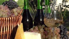El vino blanco se vierte de una botella almacen de video