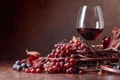 El vino rojo y las uvas frescas con secado encima de vid se va foto de archivo libre de regalías