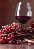 El vino rojo y las uvas frescas con secado encima de vid se va fotografía de archivo