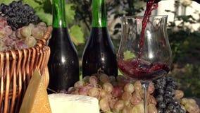El vino se vierte de una botella metrajes