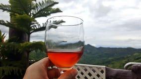 El vino tailandés de la montaña subió Fotografía de archivo libre de regalías