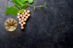 El vino tapa forma y la vid de la uva con corcho imágenes de archivo libres de regalías