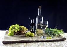 El vino y las uvas Fotografía de archivo