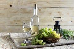 El vino y las uvas imagenes de archivo
