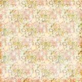 El vintage elegante lamentable florece el fondo sucio floral ilustración del vector