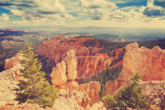 El vintage entonó las formaciones de roca en Bryce Canyon, los E.E.U.U. Fotografía de archivo