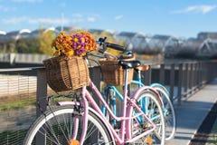 El vintage rosado y azul monta en bicicleta con las flores de cestas por el río Fotografía de archivo