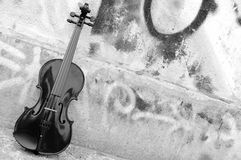 El violín Fotos de archivo