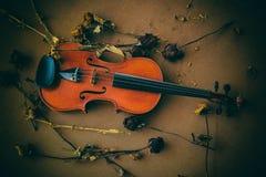 El violín clásico en el tablero de madera Fotografía de archivo