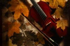 El violín y las hojas de otoño a través de un agua cae sobre el vidrio Imagenes de archivo